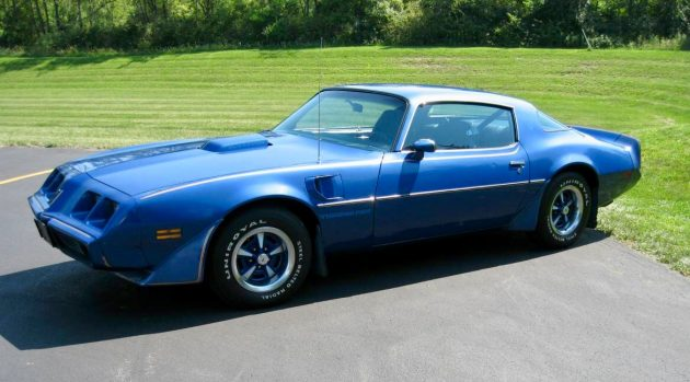 No Chicken Tax: 1981 Pontiac Firebird Trans Am