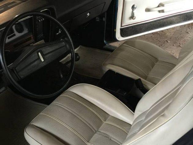 the living end 1975 oldsmobile omega. Black Bedroom Furniture Sets. Home Design Ideas