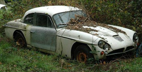 Classics In The Hedge: Yard Finds In Surrey