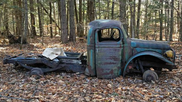 Forest Find: Dodge Power Wagon