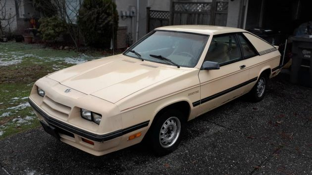 Too Nice To Race 1985 Plymouth Turismo Duster