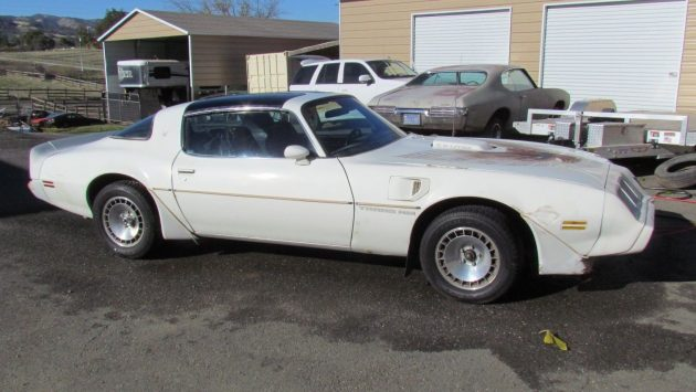 4-Speed Loophole: 1981 Pontiac Trans Am