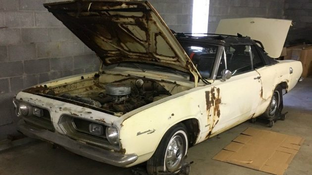 Ragged Out Ragtop: 1967 Plymouth Barracuda