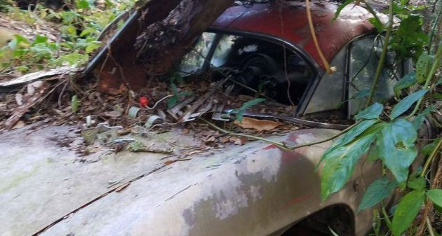 Lean-To Find: 1961 Chevy Corvette