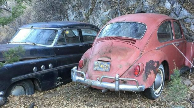 Take Your Pick: Air-Cooled VW Collection