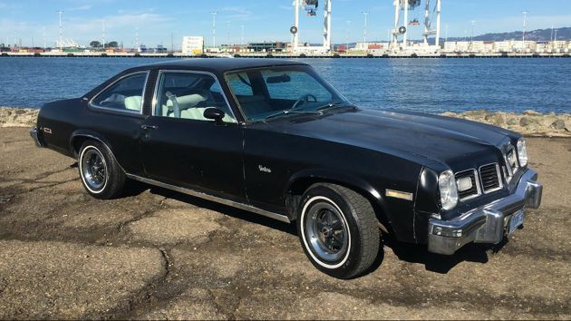 HatchBlack: 1975 Pontiac Ventura Custom