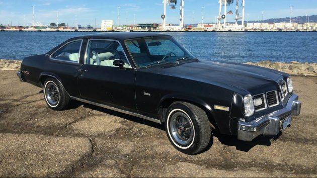 Hatchblack 1975 Pontiac Ventura Custom