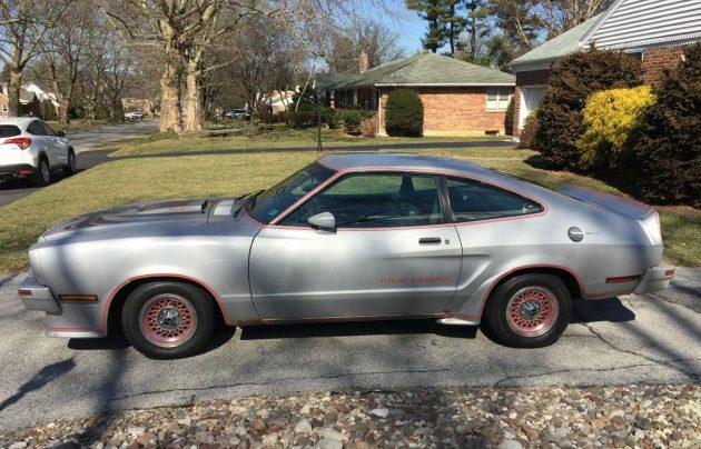1978 Mustang King Cobra For Sale Craigslist