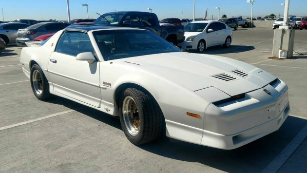 #635 Of 1500: 1989 20th Anniversary Trans Am