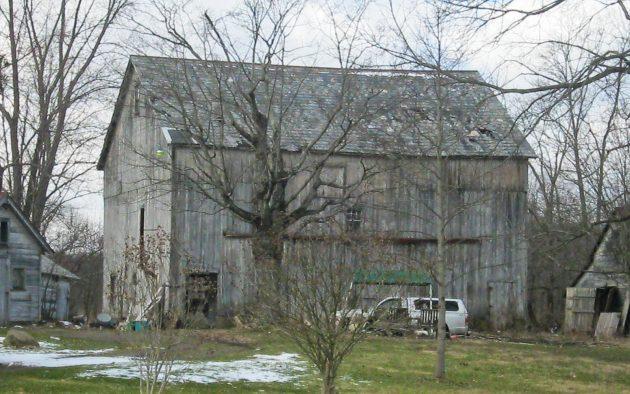 35 Years In The Barn: The Witt Kitt