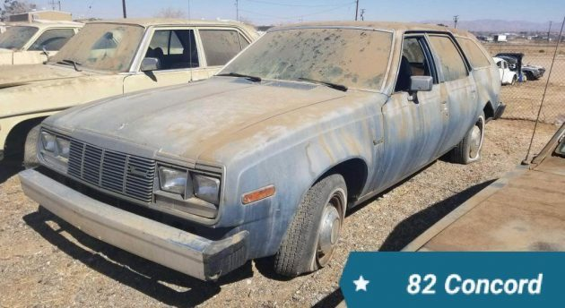 Government Cars Cleanout: 1982 AMC Concord