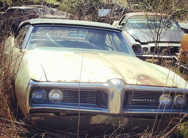 Field Of Intrigue: 1968 Pontiac LeMans Convertible