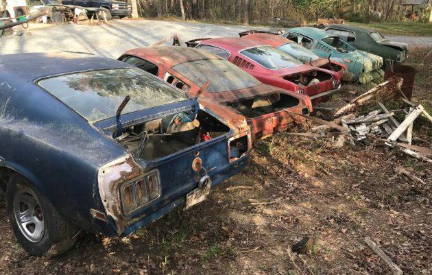 Fleet of Fastbacks: 1965 Mustang Projects