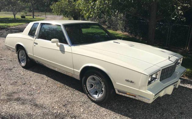 Rare Turbo: 1981 Chevy Monte Carlo