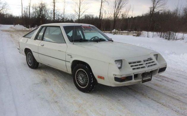 Scirocco Alternative: 1981 Dodge Omni O24