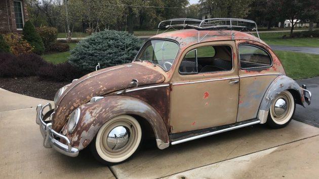modified survivor  vw beetle