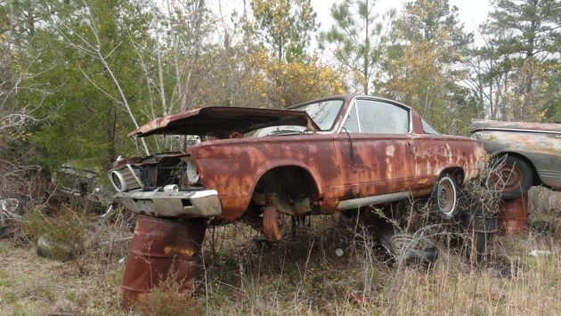 Personal Junkyard: Classics for Sale in South Carolina