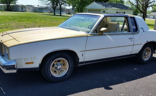1 of 537! 1979 Hurst Olds 442 W-30 with T-Tops