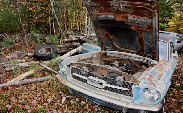 $500 Pony: 1967 Ford Mustang