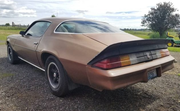 Learning To Love Brown: 1979 Camaro