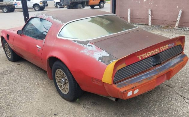 Pair Of Projects: Two Pontiac Trans Ams
