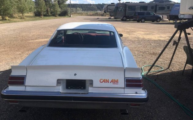 Cheap Can Am: 1977 Pontiac Can Am
