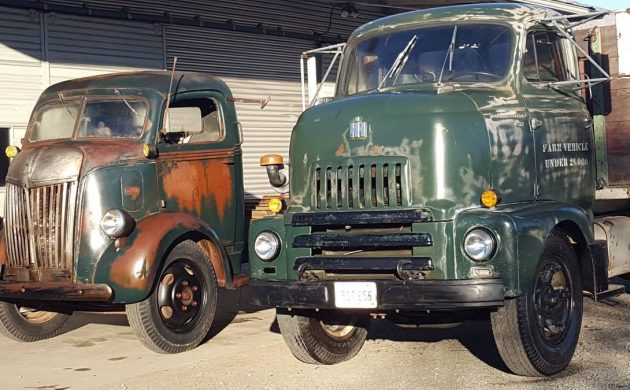Big Boy Truck Collection: COEs, Panels and Scouts