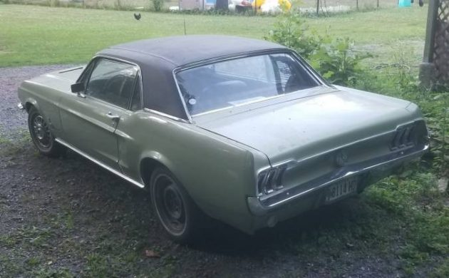 Maine Mustang: 1968 Ford Mustang 289 3-speed