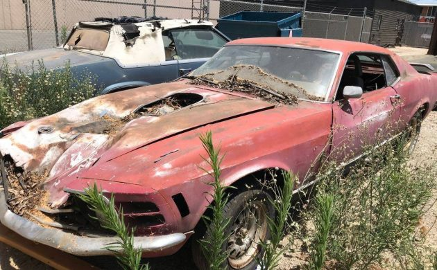 Hidden Car Collection: Muscle Cars and More!