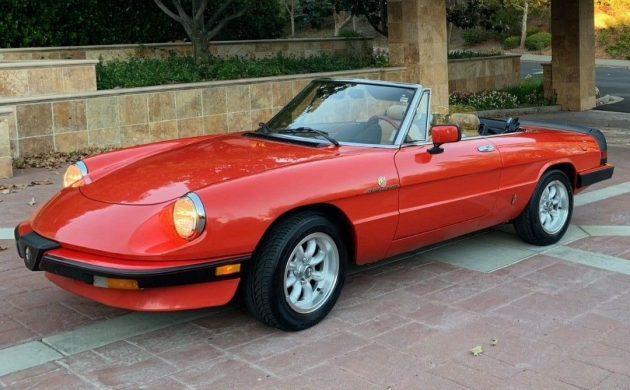 Blue Plate Special: 1984 Alfa Romeo Spider