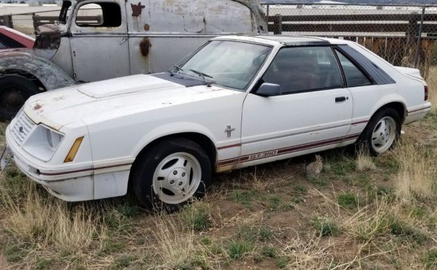 20th Anniversary Turbo: 1984 Ford Mustang GT350