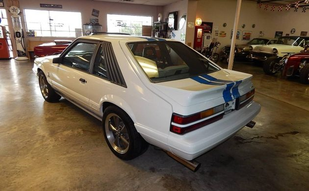 Mustang Terminator For Sale Craigslist