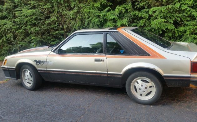 Pace Car Survivor: 1979 Ford Mustang 5.0