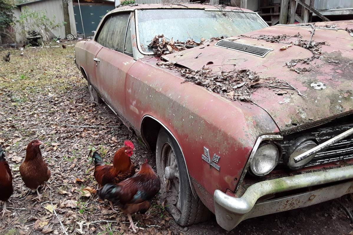 roosters  included  chevelle ss