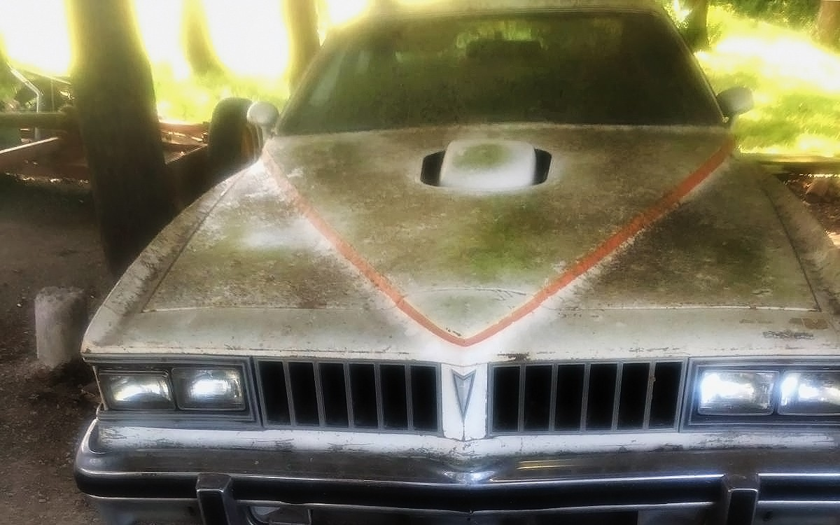 Parked For Years: 1977 Pontiac Can Am