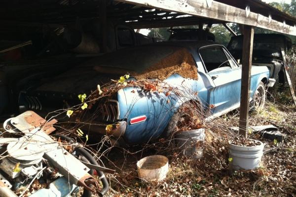 lawnmower-shop-fastback